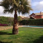 Jardin piscina+cespez